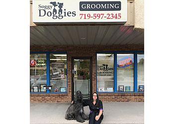 Colorado Springs pet grooming Soggy Doggies Grooming, LLC.