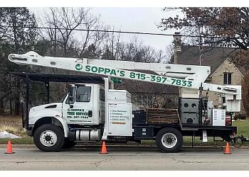 Rockford tree service Soppa's Tree Service, Inc.
