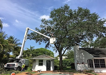 Fort Lauderdale tree service South Florida Tree Care