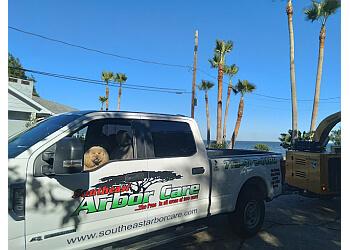 Pasadena tree service Southeast Arbor Care