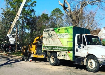 Columbia tree service Sox & Freeman Tree Expert Co.