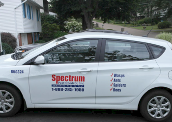 Pittsburgh pest control company Spectrum Pest Control