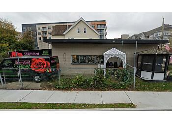 Stamford florist Stamford Florist