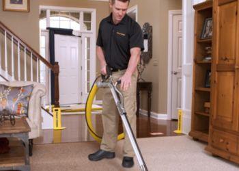 Chicago carpet cleaner Stanley Steemer