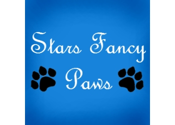 Stars Fancy Paws