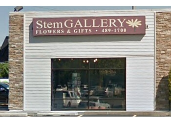Lincoln florist Stem Gallery