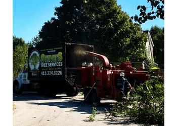 Toledo tree service Steve's Tree Services