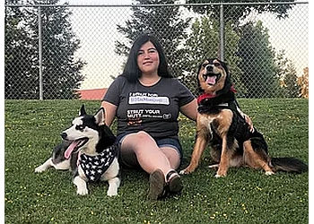 Stockton dog walker Stockton Dogs