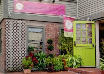 Providence florist Studio 539 Flowers