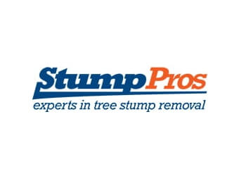 Boston tree service Stump Pros