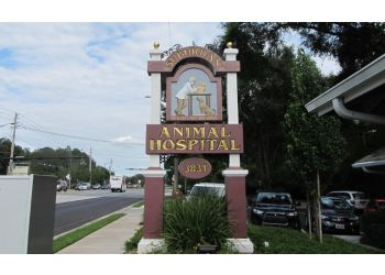 Gainesville veterinary clinic Suburban Animal Hospital