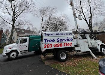 Stamford tree service Superior Arbor Care LLC