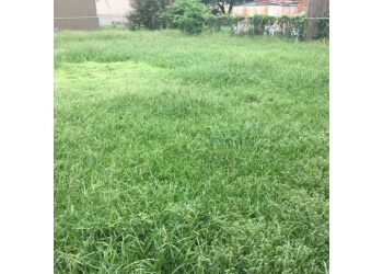 Irving lawn care service Superior Service Pros