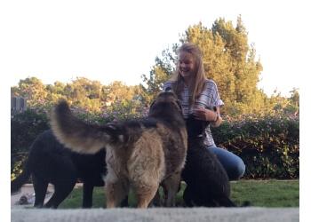 Riverside dog walker Superpet Services