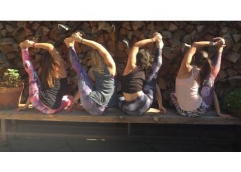 El Paso yoga studio Surya Yoga