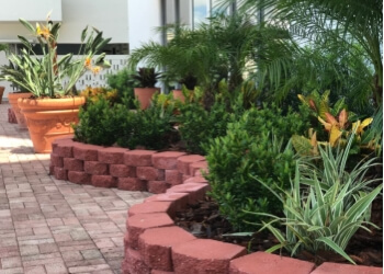 Hollywood landscaping company Sustainable Landscapes and Lawns