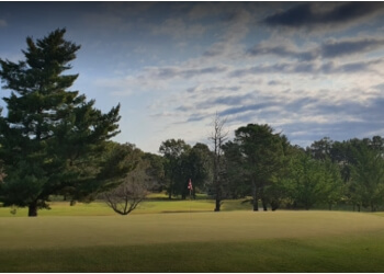 Clarksville golf course Swan Lake Golf Course