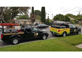 Santa Ana pest control company Swarm Pest Control