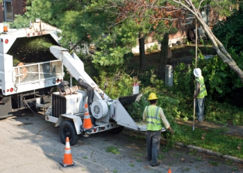 Syracuse tree service Syracuse Tree Care