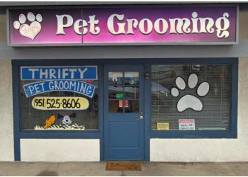 Moreno Valley pet grooming THRIFTY GROOMING