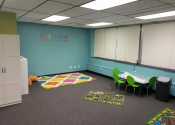 Cleveland occupational therapist  Talk Play Grow LLC