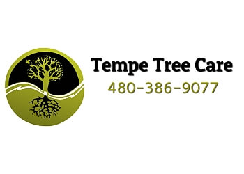 Tempe tree service Tempe Tree Care