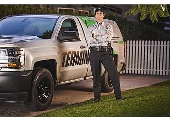 Norfolk pest control company Terminix