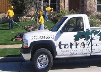 Plano lawn care service Terra Turf Landscape