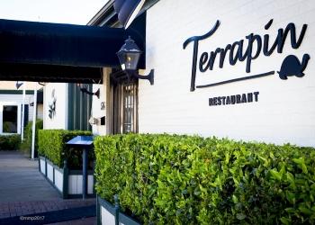 Virginia Beach american cuisine Terrapin Restaurant