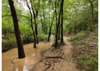 3 Best Hiking Trails in Houston, TX - Expert Recommendations