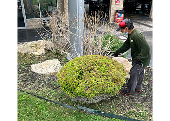 San Antonio lawn care service Texas Terrain Lawn Care
