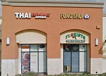 San Jose thai restaurant Thai Elephant Express