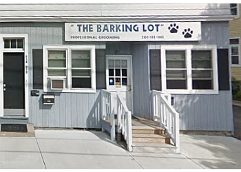 Bridgeport pet grooming The Barking Lot