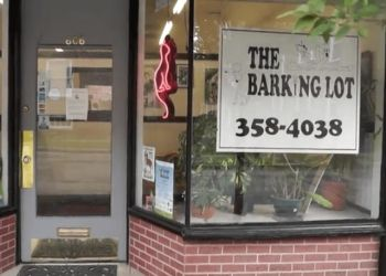 Richmond pet grooming The Barking Lot