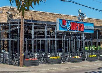 Dallas sushi The Blue Fish Greenville