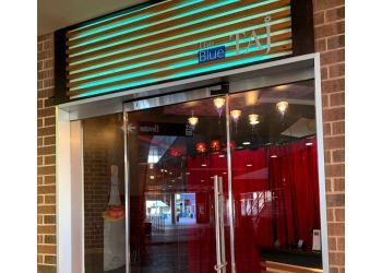 Charlotte indian restaurant THE BLUE TAJ