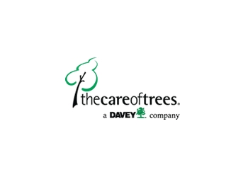 Chicago tree service The Care of Trees