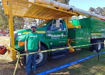 Chicago tree service The Davey Tree Expert Company
