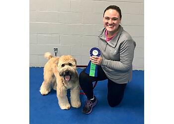 Kansas City dog training The Dogs' Spot - Dog Training Center