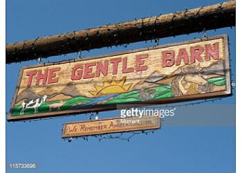 The Gentle Barn Santa Clarita Places To See