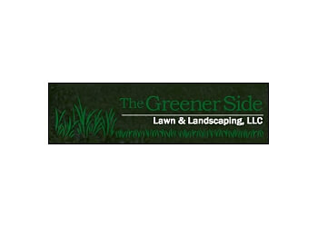 Alexandria lawn care service The Greener Side