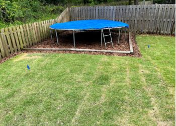 3 Best Lawn Care Services In Gainesville Fl Expert