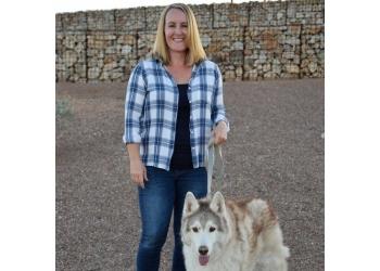 Chandler dog walker The Pet Nannies, LLC.