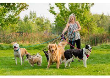 Boise City dog walker The Pet Sitter of Boise, LLC