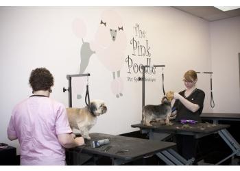 Fort Wayne pet grooming The Pink Poodle