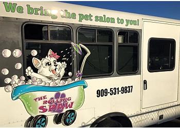 San Bernardino pet grooming The Rolling Spaw