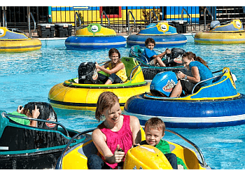 Springfield amusement park The Track Family Fun Parks