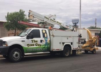Henderson tree service The Tree Guy