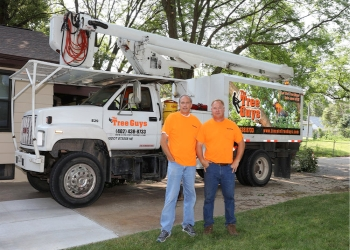 Lincoln tree service The Tree Guys