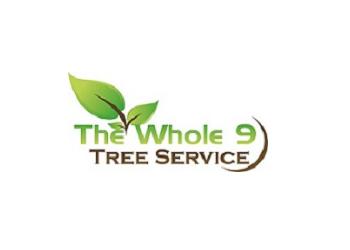 Chesapeake tree service The Whole 9 Tree Service